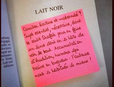 Book-it #4 «Lait noir» de Elif Shafak