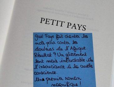 Book-it #8: «Petit pays» de Gaël Faye, Goncourt des lycéens!
