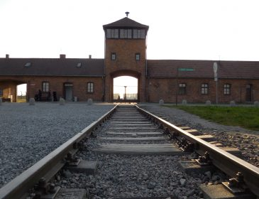 Carnets de voyages mémoriels. Camps d'Auschwitz et Birkenau