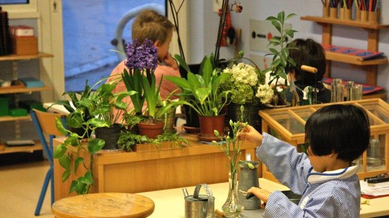 La pédagogie Montessori répond à la soif intellectuelle de l'enfant