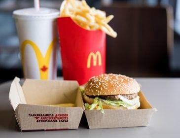 «J'ai travaillé 9 mois au McDonald's et je crois avoir des choses à vous raconter»